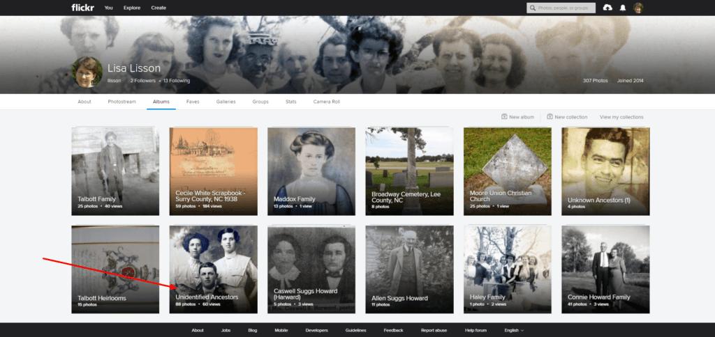 My Flickr Homepage