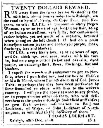 Types of Information in a Runaway Slave Advertisements