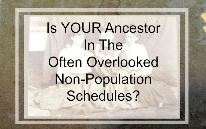 If your ancestor appears on the non-population schedules, you have a unique opportunity to learn more about them as individuals and their role in their community. In addition, the information you learn from a non-population schedule can point you to new clues and record sources no previously searched.