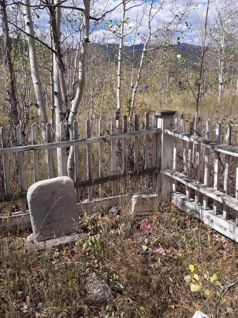 Are you getting the most out of your cemetery research? Are you finding all of the possible clues to help you jump start your genealogy research?