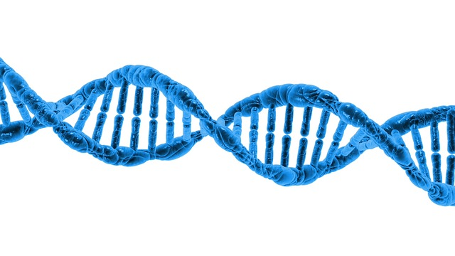 DNA testing for genealogy research is helping researchers break down brick walls. Finding DNA education opportunities does not have to be hard.#genealogy #DNA #ancestors