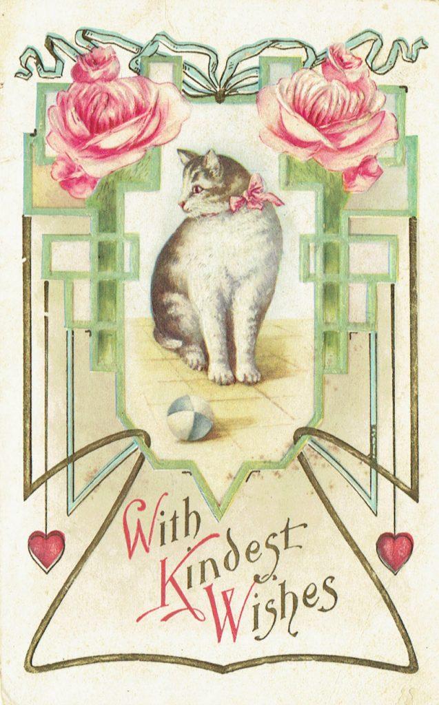 1915 Cat Postcard - Transcribing old documents